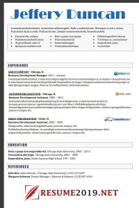 Mixed resume example 2019